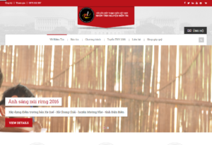 Mẫu web tinhnguyenniemtin.com