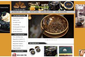 Mẫu web trungcatam.net