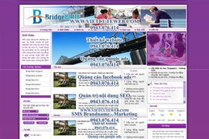 Mẫu website BridgeBlue-TYC